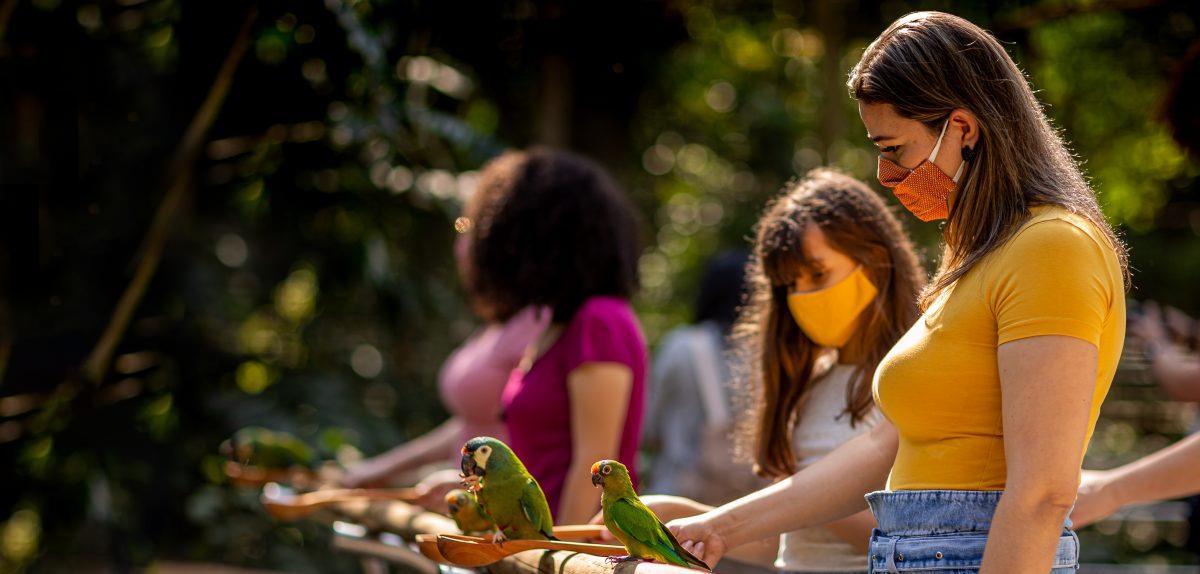 Passeios em Foz do Iguaçu para curtir em família!